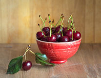 Fresh and ripe cherries from the garden. Season berries, summer food. Some fresh and juicy cherries on the table,decorated with gauze napkin Stock Photo