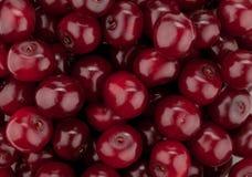 Fresh ripe cherries pattern Royalty Free Stock Image