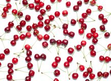Fresh ripe cherry berry on white Royalty Free Stock Photos