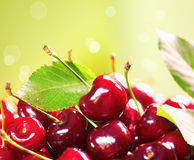 Fresh ripe cherry close up Stock Images