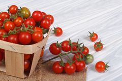 Fresh ripe cherry tomatoes in a container Stock Photo