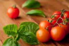 Fresh, ripe cherry tomatoes Royalty Free Stock Photos