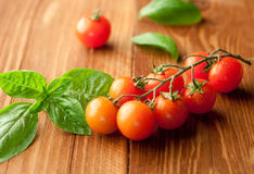 Fresh, ripe cherry tomatoes Royalty Free Stock Images