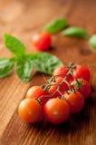 Fresh, ripe cherry tomatoes Royalty Free Stock Image