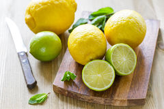 Fresh ripe citruses Royalty Free Stock Images