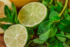 Fresh ripe citruses with mint on garden wood table Stock Images