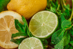 Fresh ripe citruses with mint on garden wood table Stock Image