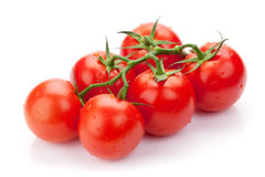 Fresh ripe clean tomatoes with water drops Royalty Free Stock Images