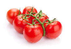 Fresh ripe clean tomatoes with water drops Stock Photography