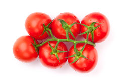 Fresh ripe clean tomatoes with water drops Royalty Free Stock Photos