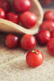 Fresh ripe cranberries. Closeup of fresh ripe cranberries on wooden background Royalty Free Stock Images