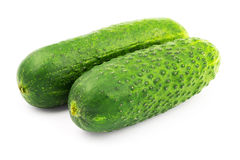 Fresh and ripe cucumbers isolated on white background. Fresh and ripe cucumbers isolated on white background Stock Photo