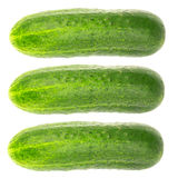 Fresh and ripe cucumbers isolated on white background. Fresh and ripe cucumbers isolated on white background Stock Image