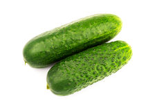 Fresh and ripe cucumbers isolated on white background. Fresh and ripe cucumbers isolated on white background Stock Images
