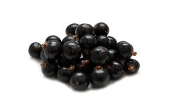 Fresh ripe currant Royalty Free Stock Image