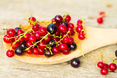 Fresh ripe currant berries bowl on wooden table background Stock Image