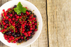 Fresh ripe currant berries bowl on wooden table background Royalty Free Stock Images