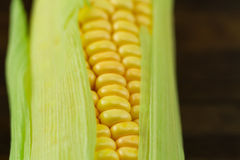 Fresh ripe ears of corn on wooden background Royalty Free Stock Photos