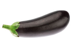Fresh ripe eggplant in water droplets. Royalty Free Stock Image