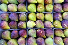 Fresh Ripe Figs in Tray Stock Photography