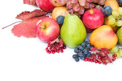 Fresh and ripe fruits. Lots of fresh and ripe fruits on white background stock image