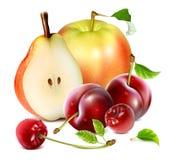 Fresh ripe garden fruits. Royalty Free Stock Images