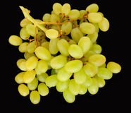Fresh ripe grapes Royalty Free Stock Photos