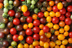 Fresh ripe and green cherry tomatoes. Food top view Royalty Free Stock Photos