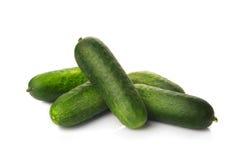 Fresh ripe green cucumbers Stock Photography