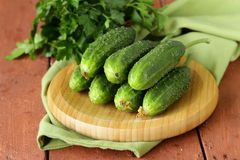 Fresh ripe green cucumbers Royalty Free Stock Images