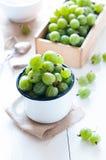 Fresh ripe green gooseberry Stock Image