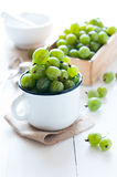 Fresh ripe green gooseberry Royalty Free Stock Images