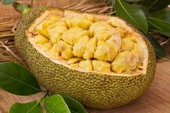 Fresh ripe jackfruit. Fresh sweet jackfruit segment ready for eat. Stock Images