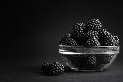 Fresh Ripe Juicy Blackberries in a plate on black background.  Royalty Free Stock Photo