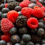 Fresh ripe juicy organic blueberries, raspberries, blackberries, close up image stock photography