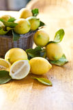 Fresh ripe lemons Stock Image