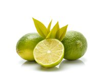 Fresh ripe lime Stock Photo
