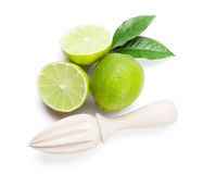 Fresh ripe limes and juicer Stock Images