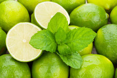 Fresh ripe limes with mint Stock Images
