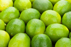 Fresh ripe limes Stock Photo
