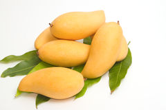 Fresh Ripe Mangoes with green leaves Stock Photo