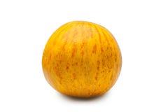 Fresh ripe melon Royalty Free Stock Photography