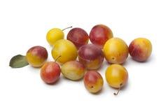 Fresh ripe mirabelle plums Stock Image
