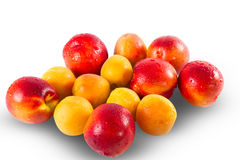 Fresh ripe Nectarines and apricots Royalty Free Stock Images