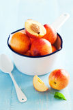 Fresh ripe nectarines Royalty Free Stock Photos