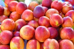 Fresh and ripe nectarines Royalty Free Stock Images