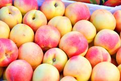 Fresh and ripe nectarines Royalty Free Stock Photos