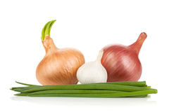 Fresh ripe onion and garlic Royalty Free Stock Photography