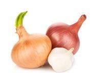 Fresh ripe onion and garlic Stock Photos