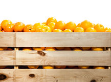 Fresh and ripe orange fruits. In wooden box isolated Stock Images